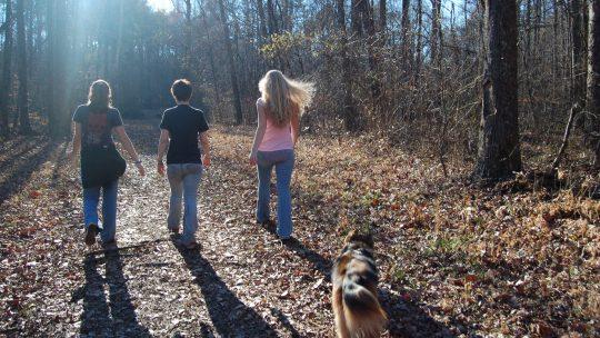 Gode råd når du skal gå tur med hunden